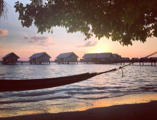 Cast adrift…..to Paradise