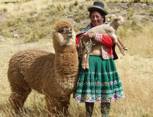 Colourful and Unforgettable Peru by Gabriele Scholes