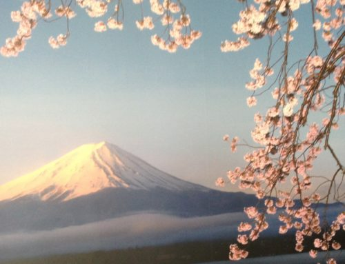 Japan – a country for all seasons