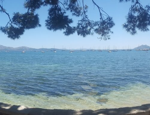 A Week at Pollenca, Majorca by John and Jill Chisholm